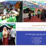 همایش پاکستان شناسی در جشنواره فرهنگ ملل