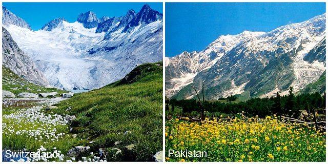 -Naltar-Valley-Gilgit-Baltistan