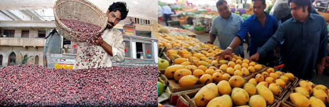 summer fruits in pakistan