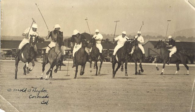 history of polo
