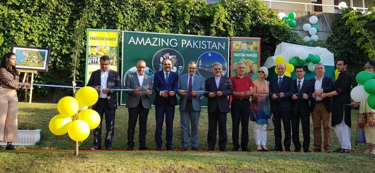 انبه پاکستانی