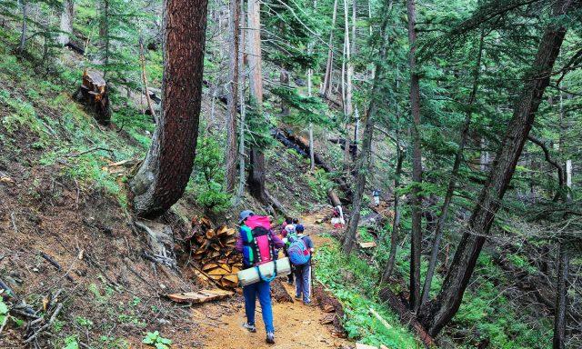 7 Trekkers and tourists pass through Anakar forest towards Mastij Lake.