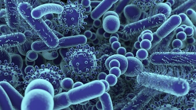 Pakistani Scientist's Research on Viruses Now Ranks 1 On Google scholar