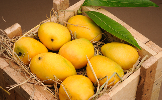 Trade diplomacy Pakistan to gift mangoes to heads of states