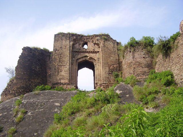 2 Pharwala Fort
