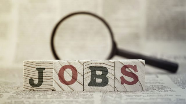 All Job Seekers Can Now Apply for Govt Jobs at Punjab Jobs Portal