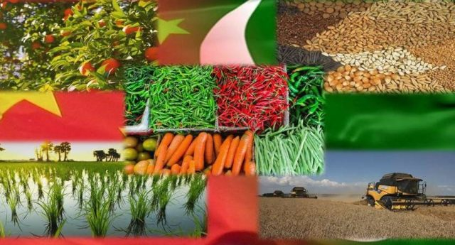 China fully supporting Pakistan to revamp Agriculture Sector