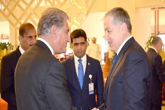 FM Qureshi, Kyrgyz FM discuss bilateral relations - Pakistan
