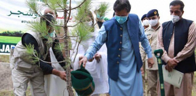 PM Imran Khan inaugurates monsoon tree plant