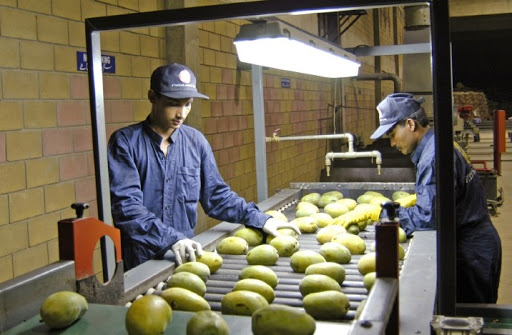 Pakistan passes mango export targets