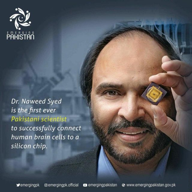 first neuro-chip Dr. Naweed Syed