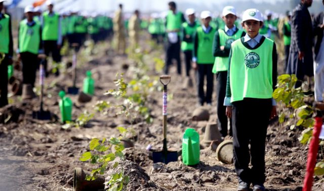 PM Khan kicks off 10 billion tree plantation drive