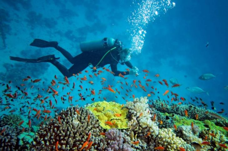 second-national-marine-park-on-the-anvil-at-charna-island-amid-climate-change-