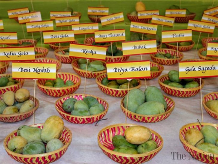Mango exports from Pakistan are expected to increase by seven percent to reach 150,000 tons this year.