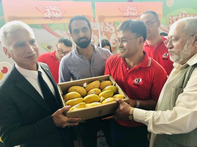 Pakistani Mangoes find new market attraction in China