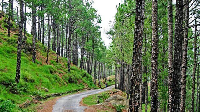 Kotli Sattian to Rival Murree as a Tourist Destination