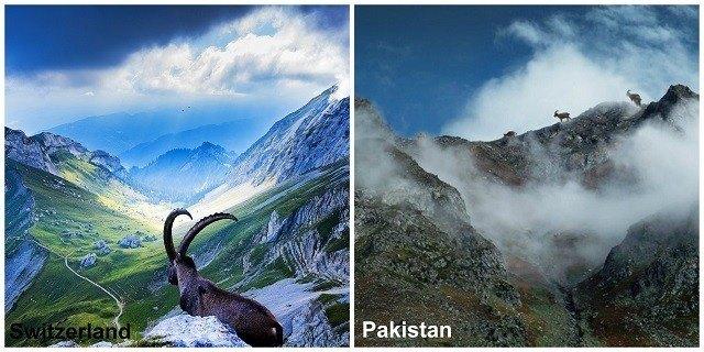 Switzerland Cannot Match the Beauty of Pakistan PM Imran Khan